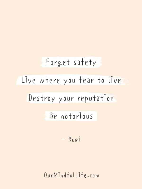Forget safety. Live where you fear to Iive. Destroy your reputation. Be notorious. - Rumi